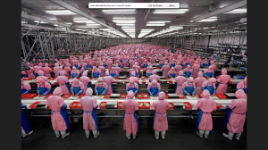 Manufacturing #17Deda Chicken Processing Plant, Dehui City, Jilin Province, China, 2005